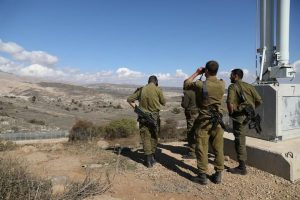 Taglio basso Alture Golan – 2000:3000 battute