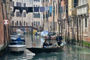 venezianern