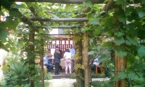 garden venice
